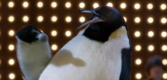 pino-il-pinguino